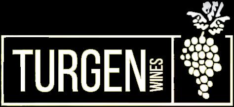 Turgen логотип